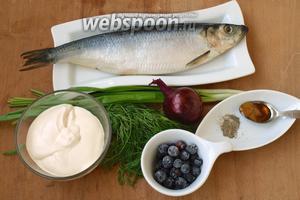 Для приготовления закуски нам понадобится слабосолёная сельдь, зелёный лук, пучок укропа, лук фиолетовый, сметана, мёд, чёрный молотый перец и замороженная чёрная смородина.