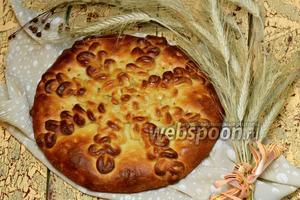 Пирог «Колоски»