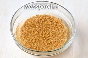 Пшеницу промыть и замочить в тёплой воде на 12 часов — это ускорит в дальнейшем приготовление пшеницы.
