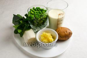 Чтобы приготовить суп-крем, необходимо взять: горошек зелёный замороженный (нежных сортов хорошего качества), лук-порей, мяту свежую 10-15 листков, картофель, сливки 20 %, масло топлёное, соль.
