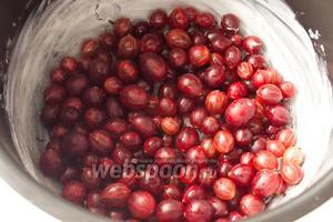 Высыпьте подготовленные ягоды крыжовника на дно мультиварки.