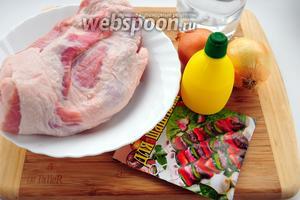 Для приготовления шашлыка вам понадобятся: мякоть свинины, лук, охлаждённая сильногазированная вода, лимонный сок, соль и приправа для шашлыка.
