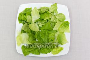 Салатные листья хорошо промоем. Порвём на большие кусочки.