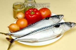 Для приготовления рыбы нам понадобится: свежемороженная скумбрия, помидоры, крупный сладкий перец, репчатый лук, дижонская (французская) горчица с зёрнышками, прованские травы, соль, перец.