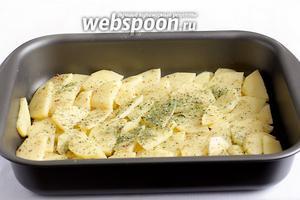В форму для запекания налить 3 ст. ложки растительного масла. Выложить ломтики картофеля слоями. Каждый слой слегка подсаливать и посыпать специями.