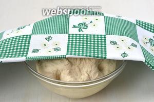 Накрыть сверху полотенцем и поставить в тёплое место на 1 час.