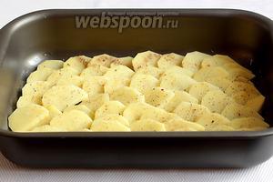 В форму налить оливковое масло и выложить ломтики картофеля «черепицей». Поставить в духовку запекать при 210 ºC около 10 минут, не до полной готовности. Время запекания зависит от сорта картофеля.