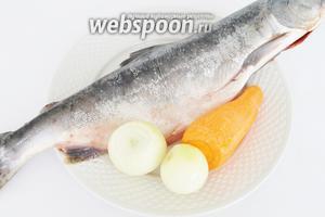 Для холодца из рыбы понадобится одна рыба целая и ещё голова и хвост (в моём случае от нерки). Понадобится 1 яичный белок для осветления бульона.