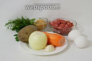 Для приготовления кебаба из мясного фарша и картофеля возьмём фарш говяжий, отварной картофель, лук, морковь, чеснок, яйца, чеснок, панировочные сухари, петрушку, укроп, приправы и специи по вкусу, масло подсолнечное для жарки.