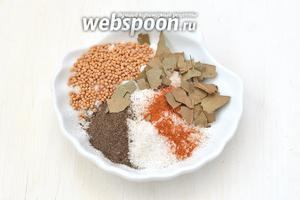 Соединить паприку, соль, перец, горчицу, лавровый лист.