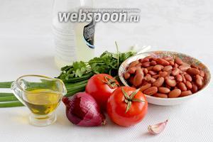 Для приготовления салата из помидор и фасоли возьмите лимонный сок, оливковое масло, помидоры, фасоль (красную или белую), чеснок, фиолетовый лук, разную зелень, соль и сахар.
