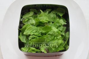 Последний слой — рваные листья зелёного салата.