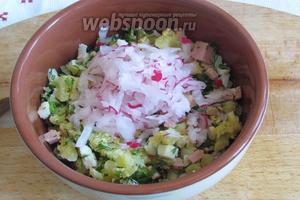 В пиалу положить покрошенные овощи с колбасой, редиску, посолить по вкусу.