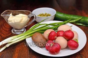 Итак, для того чтобы приготовить весенний салат вам понадобится редис, куриные яйца, горошек, картофель, майонез, соль, зелёный лук и огурцы.