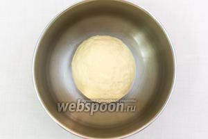 Подсыпая муку, замесим мягкое, эластичное тесто. Миску смажем подсолнечным маслом, выкладываем тесто. Накрываем плёнкой. Ставим в тёплое место на 1-1,5 часа.