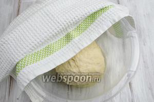 Замесить тесто, в конце замеса добавить ещё оливкового масла 1 ст.л. и соль. Шар теста выложить в посуду, стенки которой слегка смазаны маслом. Накрыть салфеткой и поставить в тепло на 30-40 минут.
