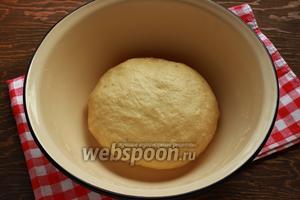 Хорошо вымесить тесто, накрыть и убрать в тёплое место на 40 минут.
