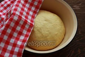 Тесто должно увеличится в объёме в 2 раза.