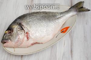 Рыбу почистить, выпотрошить (очень аккуратно удалить жёлчный пузырь, чтобы не испортить вкус рыбы), удалить жабры, глаза. Острым ножом срезать плавники. Вымыть рыбу под холодной водой. Обсушить льняной салфеткой.
