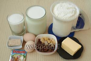 Для приготовления пасхальных куличей нам понадобится кипячёное молоко, мука, сахар, сливочное масло, яйца, свежие дрожжи, ванилин, изюм и цукаты.