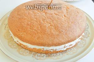 Оставшуюся часть сливок так же разделим на половины. Одной обильно намажем верх и бока торта. Вторую поместим в шприц или кулинарный мешок и выдавим рисунок в виде спирали, наносим от центра наружу. Убирём торт в холод на 1 час.