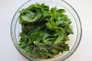 Промываем крапиву, использовала только листья и верхушки.