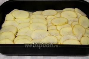 Уложить кружочки картофеля рядами с нахлёстом на мясо. Поставить в нагретую до 250 ºC духовку на 20 минут, потом температуру снизить до 180 ºC и запекать ещё 30 минут.