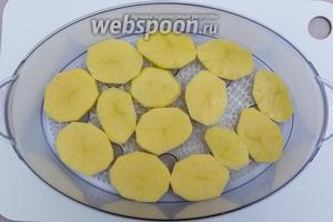 Картофель очистим, нарежем кружочками. Выкладываем его в чашу пароварки. Готовим 15 минут.