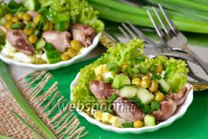 Лёгкий салат с куриными сердечками