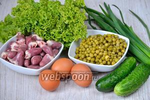 Для того чтобы приготовить лёгкий салат с куриными сердечками вам понадобится горошек, огурцы, зелёный лук, яйца куриные, соль, оливковое масло, куриные сердечки и листья салата.