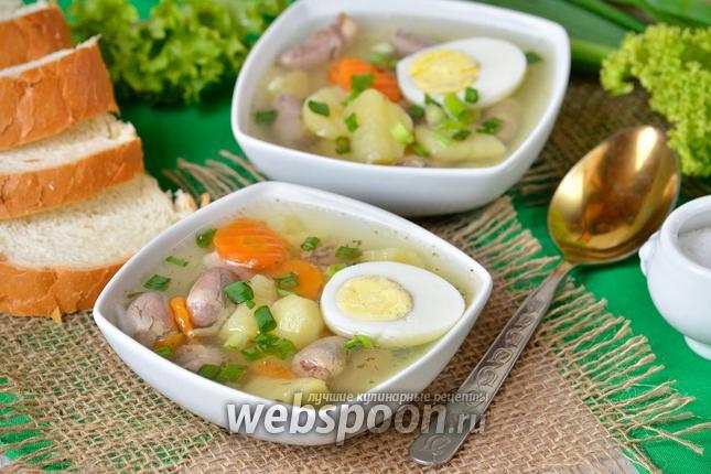 Фото Суп с куриными сердечками и яйцами