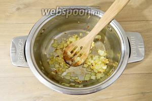 В небольшом количестве масла пассируем лук и чеснок.