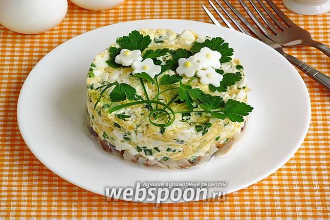 Фото Закуска из сельди под сырно-яичной «подушкой»