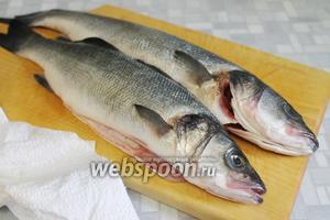 Рыбу очистить от чешуи, выпотрошить, осушить кухонным полотенцем.