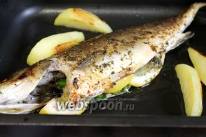 Запекать 40 минут в духовке, нагретой до 180 ºC. В процессе запекания перевернуть рыбку, поливая выделившимся соком.
