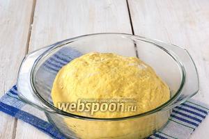 Замесить тесто. Месить тесто приблизительно 10 минут.