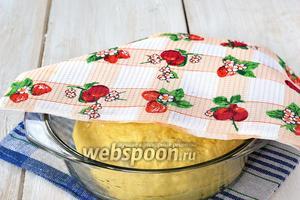 Накрыть тесто полотенцем и отправить в холодильник на 6-8 часов.