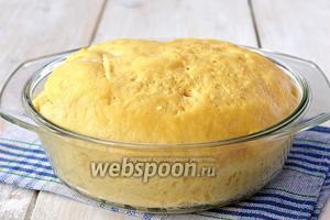 Тесто готово. Перед формировкой изделий прогреть тесто при комнатной температуре на протяжении 30 минут.