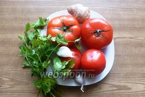 Нам нужны помидоры, пучок кинзы, 2 зубчика чеснока, кусочек имбиря около 2 см, соль, сахар, оливковое масло.