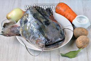 Для того чтобы приготовить вкусную наваристую уху из сома вам понадобится лук, морковь, голова сома, лавровый лист, соль и перец чёрный молотый.