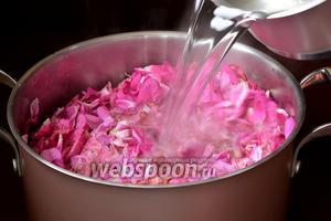 Воду (2 литра) довести до кипения, добавить лимонную кислоту и кипящей смесью залить лепестки.
