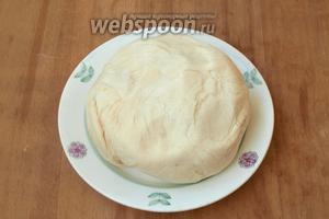Спустя это время у нас выйдет вот такое тесто — мягкое и эластичное.