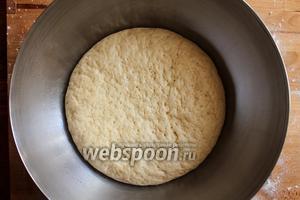 Когда тесто увеличится в 2-3 раза в размере, можно будет приступить к формовке.