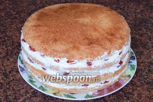 Накрываем торт четвёртым коржом, выравниваем бока.