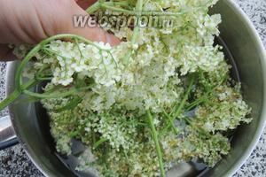 В кипящий сироп закидываем соцветия бузины. «Утопим» их всех в жидкости.