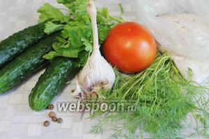 Для приготовления малосольного салата по-быстрому взять огурцы, помидор, укроп, петрушку, чеснок, перец душистый, соль, сахар.