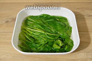 Для начала приготовим пюре из шпината. Для этого шпинат заливаем кипятком и оставляем на 5 минут.