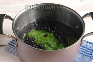 Поместить смородину и листья в кастрюлю. Залить кипятком.