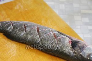 Рыбу надрезать по спинке крест-накрест.