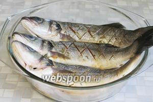 Замариновать в приготовленном маринаде. Оставить в холодильнике под крышкой на необходимое время (я мариновала для ужина часов 5), периодически переворачивая рыбу, чтобы маринад пропитал её всю.